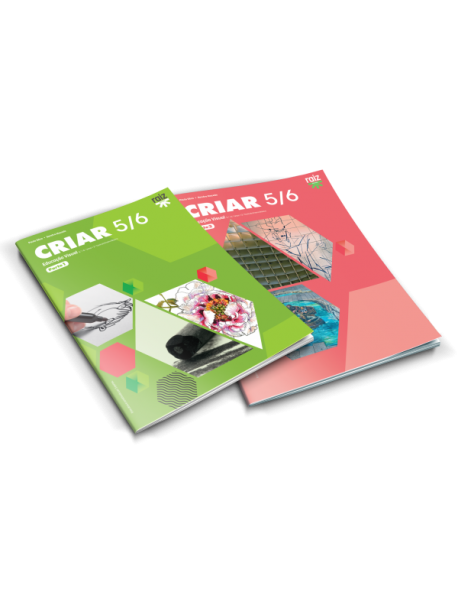 Criar - Educação Visual - 5.º/6.º
